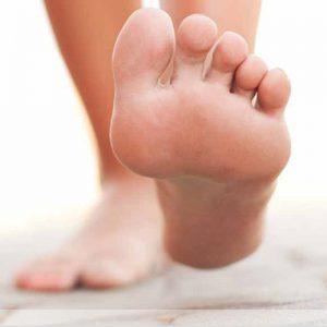biofoot catalog